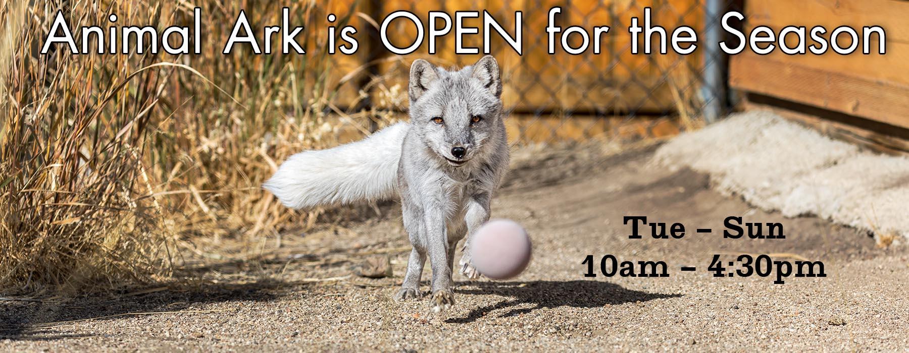 Open for Season