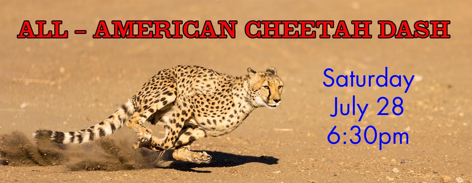 All American Cheetah Dash Header