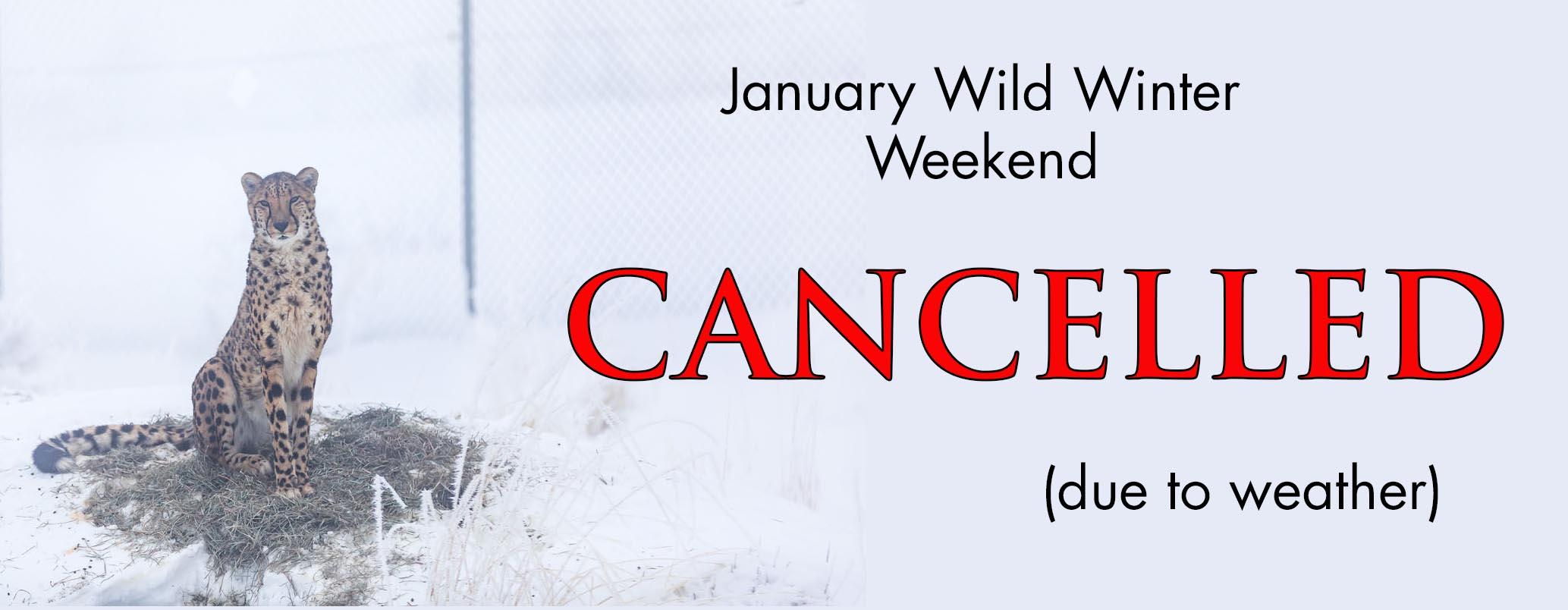 Wild Winter Weekend Cancelled