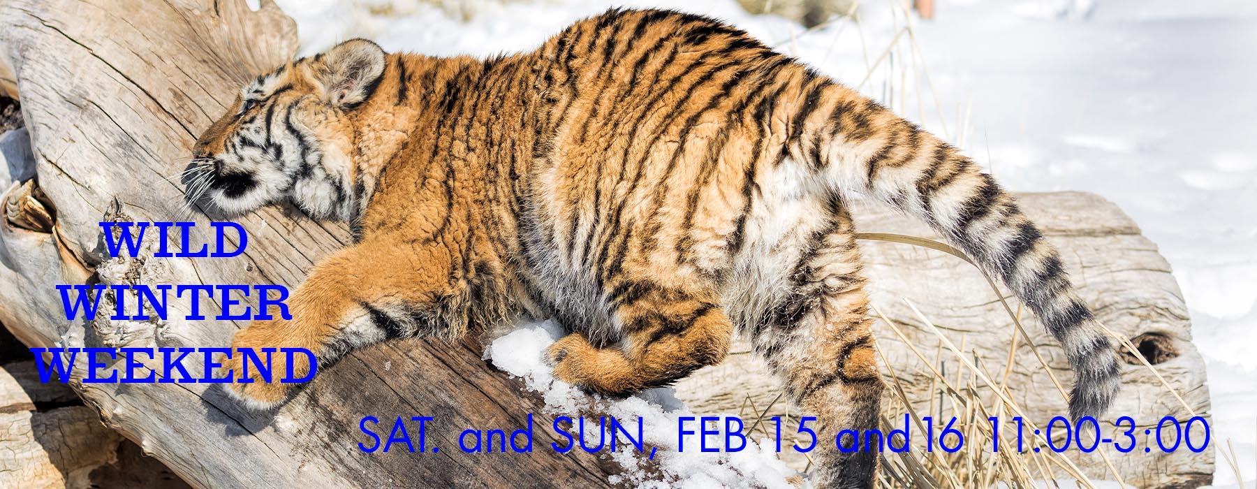 Wild Winter Weekend February